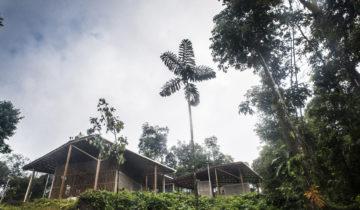 Escuela Indigena